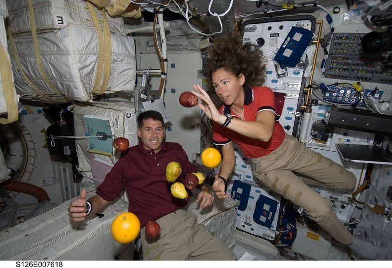 Ставропольские ученые выдумали новейшую еду для космонавтов